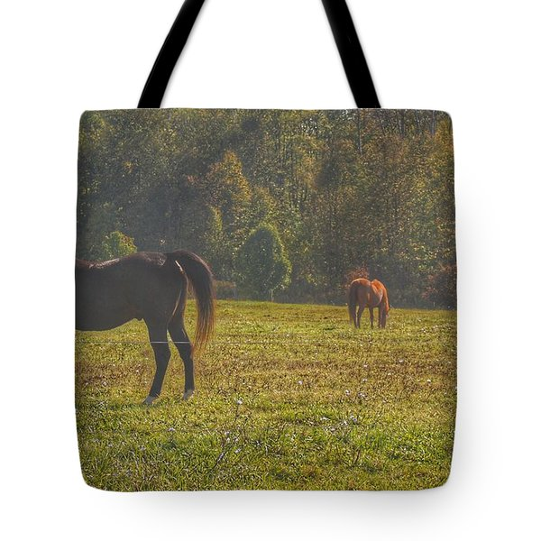 1012 - Fargo Road Horses I Tote Bag