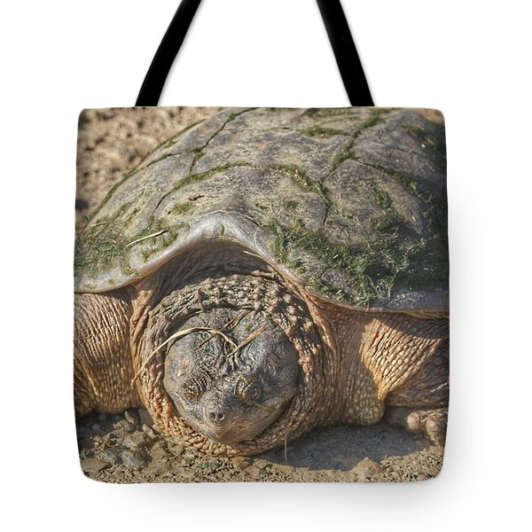 1013 - Fargo Road Turtle Tote Bag