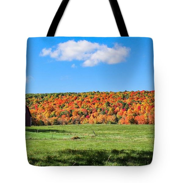 Tote Bag featuring the photograph Farm View From Russellville Road by Sven Kielhorn