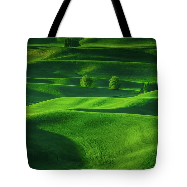 Farmhouse In The Waves Of Light Tote Bag by Don Schwartz