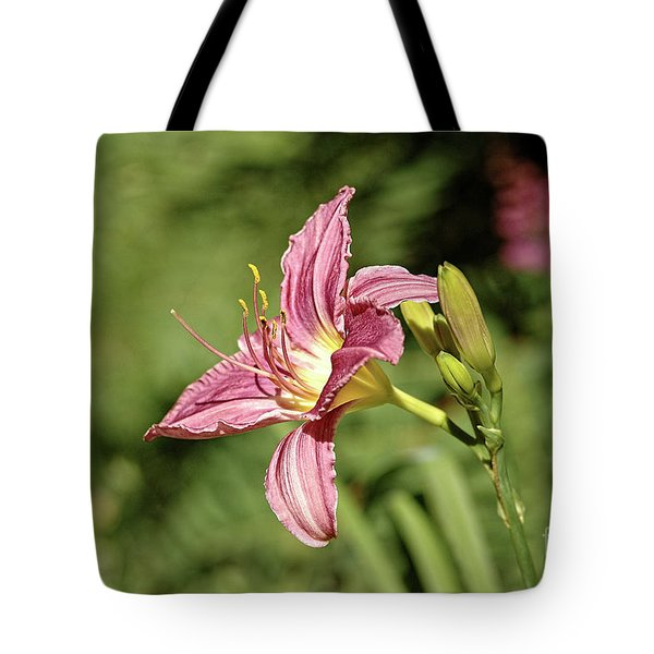 Farmington Lilly 4 Tote Bag