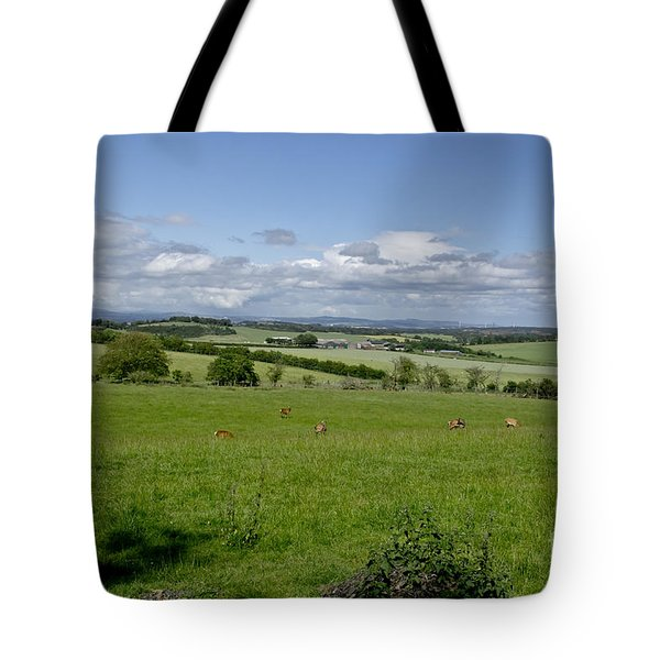 Farmland In Beecraigs. Tote Bag