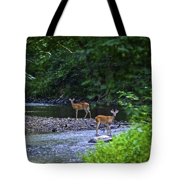 Fascinated Tote Bag