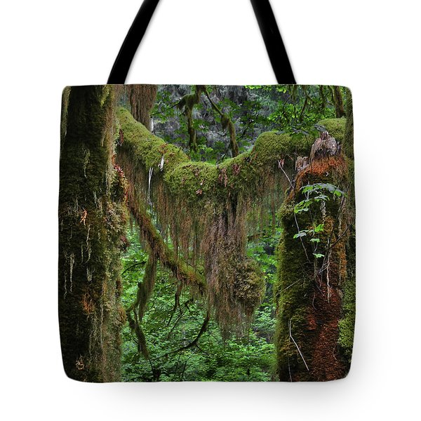 Fascinating Hoh Valley - Hoh Rain Forest Olympic National Park Onp Wa Usa Tote Bag by Christine Till