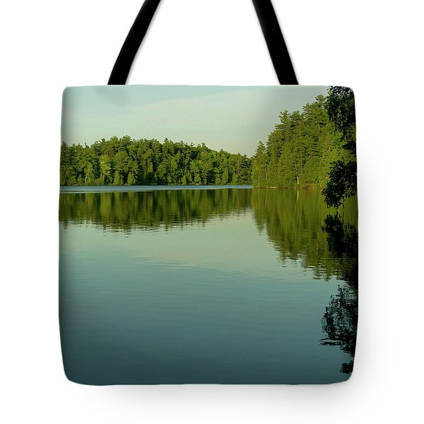 Fast Approaching Tote Bag