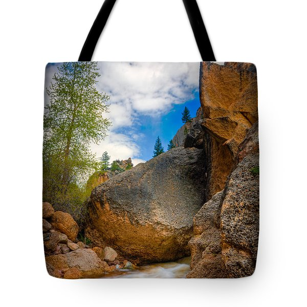 Fast-flowing Crazy Woman Tote Bag
