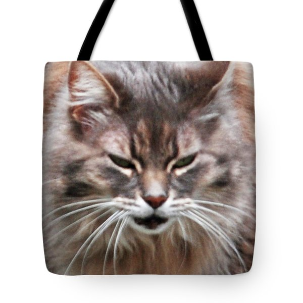 Fat Cats Of Ballard 4 Tote Bag