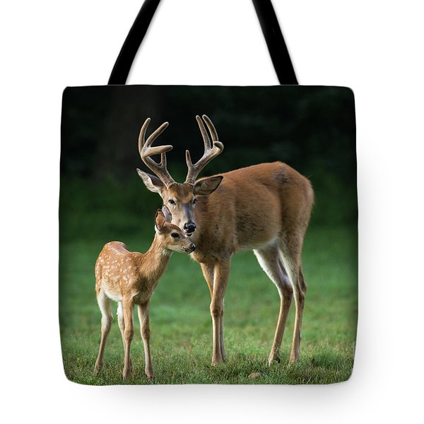 Tote Bag featuring the photograph Fatherly Advice by Andrea Silies