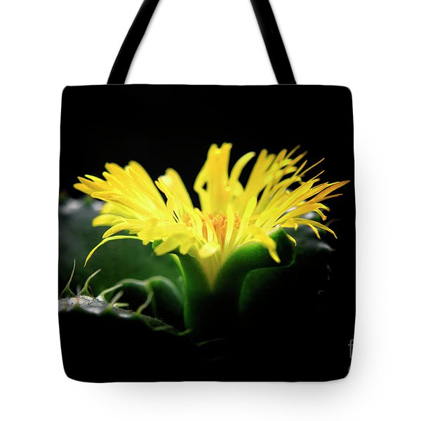 Faucaria Tigerina Tiger's Jaw Tote Bag by Charline Xia