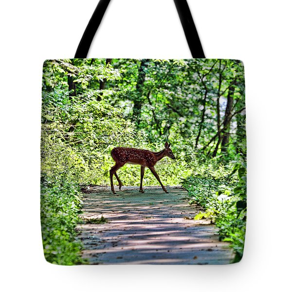 Tote Bag featuring the photograph Fauntastic by Anthony Baatz