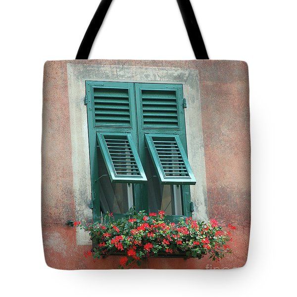 Tote Bag featuring the photograph Faux  Painting Window  by Frank Stallone