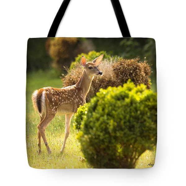 Tote Bag featuring the photograph Fawn by Angel Cher
