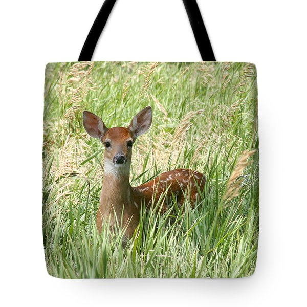 Fawn In The Tall Grass Tote Bag