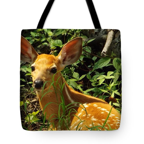 Fawn In The Woods 2 Tote Bag