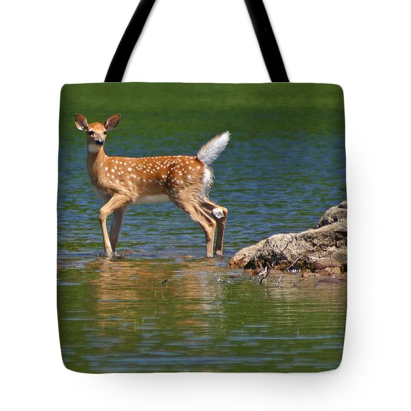 Fawn In Water Tote Bag