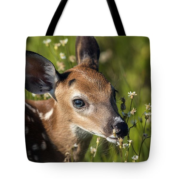 Fawn In Wildflowers Tote Bag