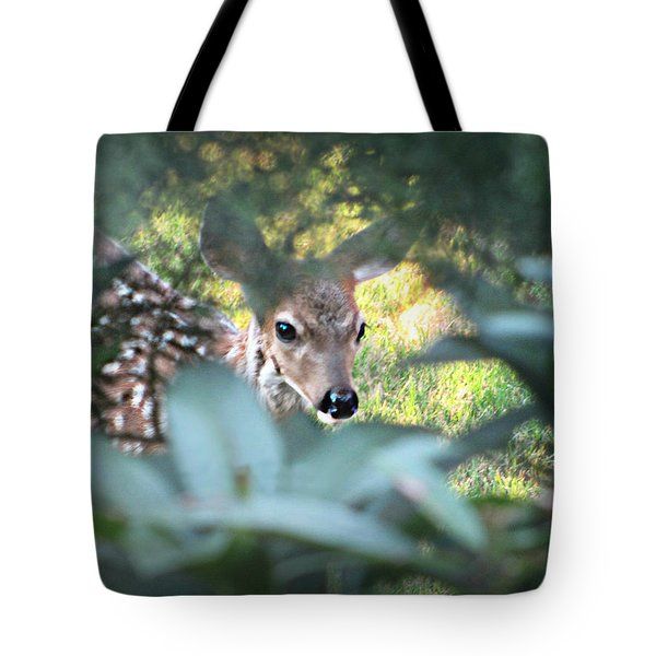 Fawn Peeking Through Bushes Tote Bag