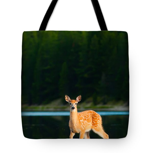 Fawn Tote Bag by Sebastian Musial