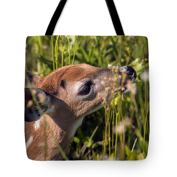 Fawn Smelling The Wildflowers Tote Bag