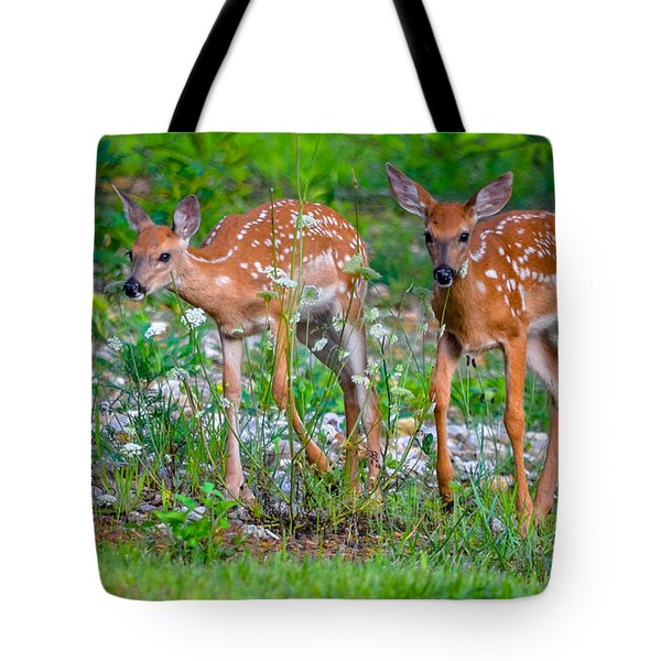 Fawn Twins Tote Bag by Brian Stevens