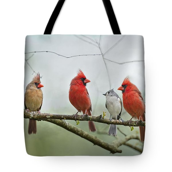 Fear Not Little Flock Tote Bag