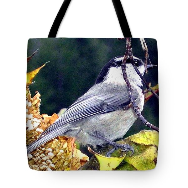 Feast For A Chickadee Tote Bag by Will Borden