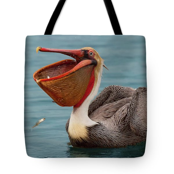Tote Bag featuring the photograph Feasting Brown Pelican  by Ram Vasudev