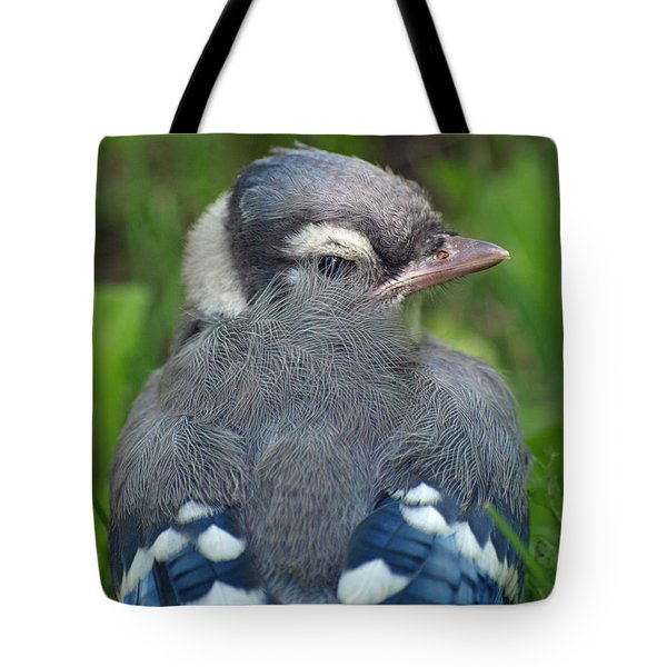 Tote Bag featuring the photograph Feathered Jay by James Peterson