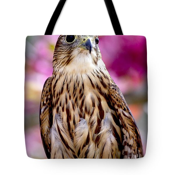Feathered Wizard Tote Bag