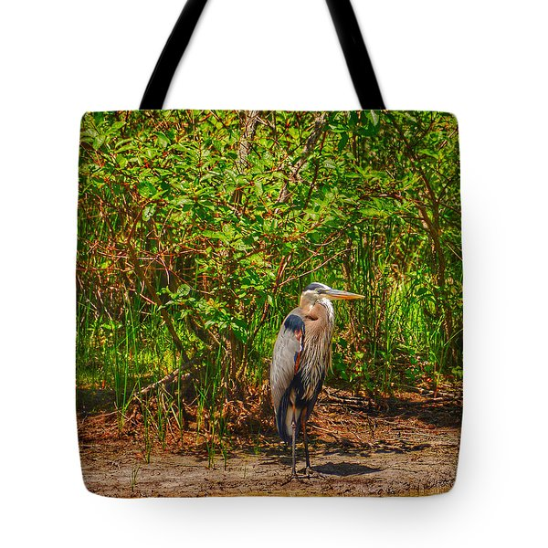 Featherstrokes I Tote Bag