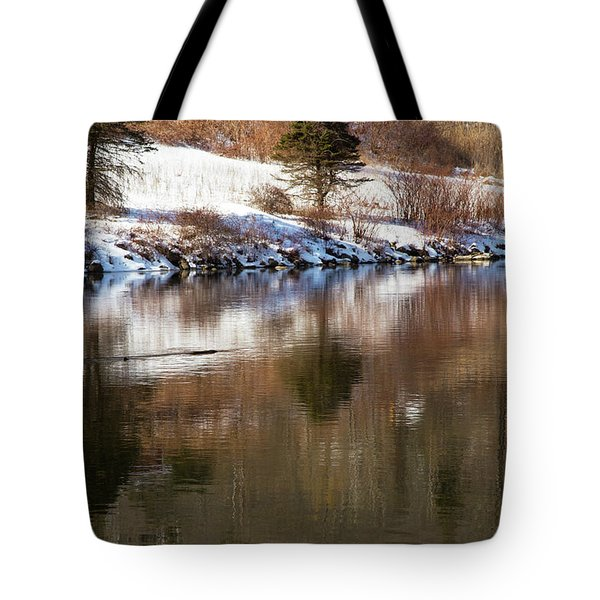 Tote Bag featuring the photograph February Reflections by Karol Livote