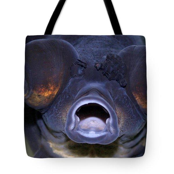 Feed Me Tote Bag by Linda Sannuti