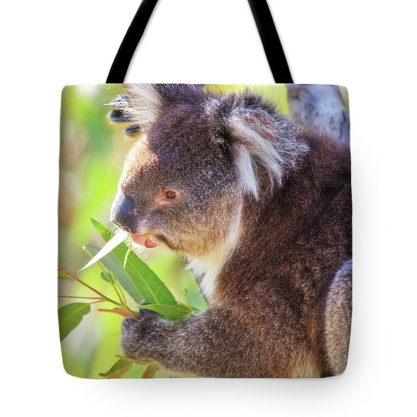 Tote Bag featuring the photograph Feed Me, Yanchep National Park by Dave Catley