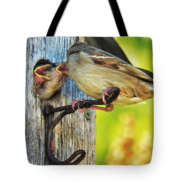 Feeding Baby Sparrows 1 Tote Bag