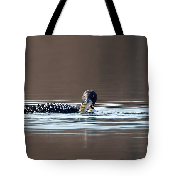 Feeding Common Loon Tote Bag by Bill Wakeley