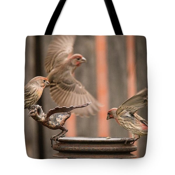 Feeding Finches Tote Bag