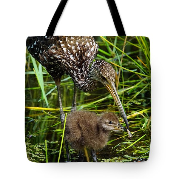 Feeding Limpkin Chick Tote Bag by Larry Nieland