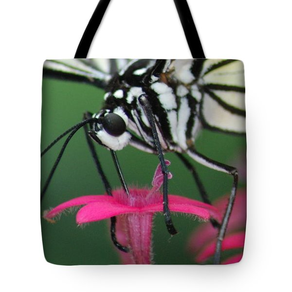 Tote Bag featuring the photograph Feeding Rice Paper by Richard Bryce and Family