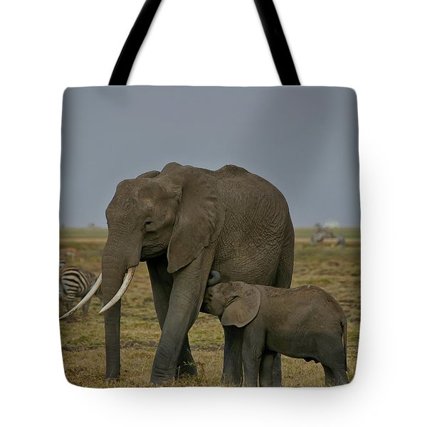 Feeding Time Tote Bag by Gary Hall