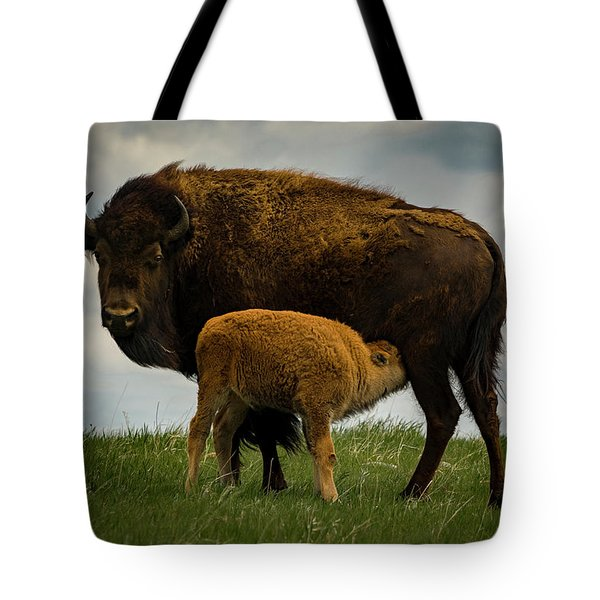 Tote Bag featuring the photograph Feeding Time II by Gary Lengyel
