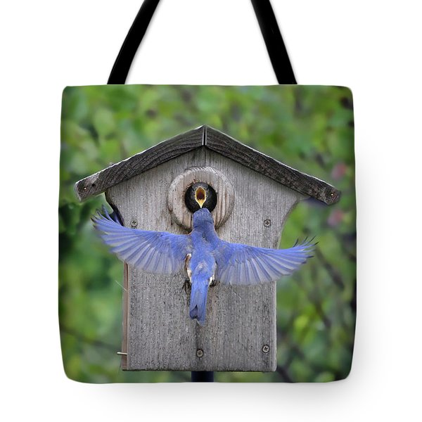 Tote Bag featuring the photograph Feeding Time by Jackson Pearson