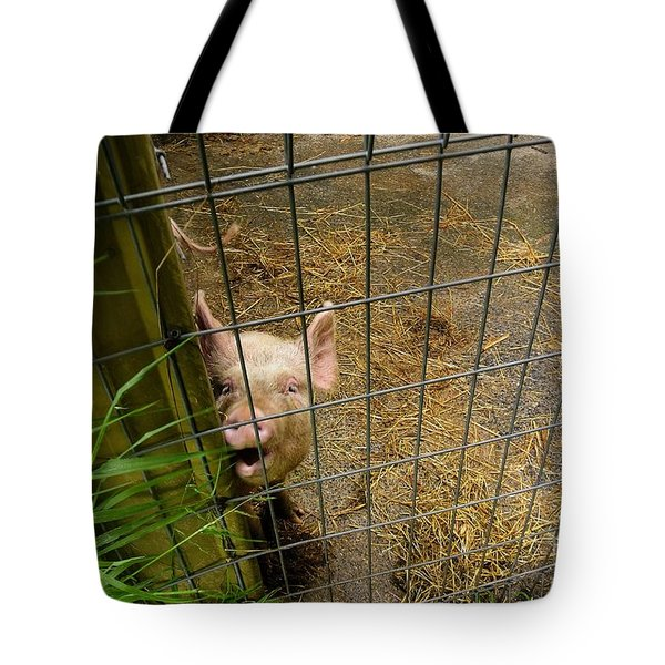Feeding Time Tote Bag by Oscar Moreno