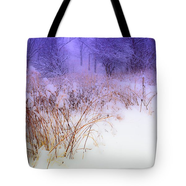 Feel Of Cold Land Tote Bag