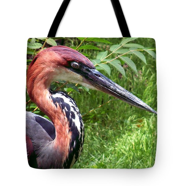 Tote Bag featuring the photograph Feeling A Bit Peckish by RC deWinter
