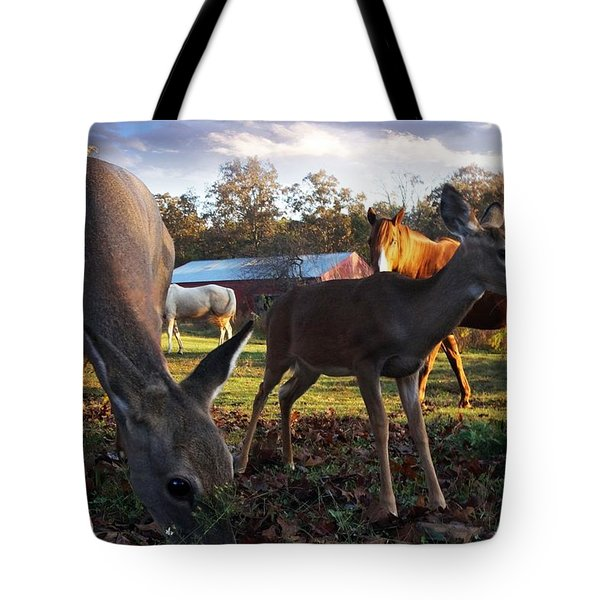 Feeling At Home Tote Bag by Bill Stephens