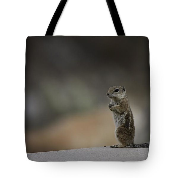 Tote Bag featuring the photograph Feeling Chipper by Anne Rodkin