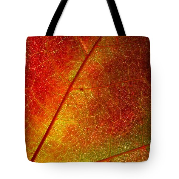 Tote Bag featuring the photograph Feeling Fall by Kathi Mirto