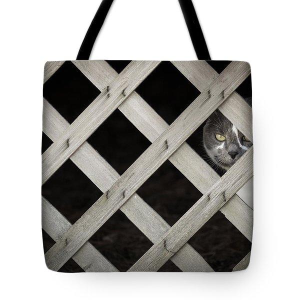 Feline Fence Tote Bag
