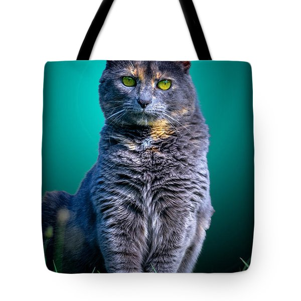 Feline Shine Tote Bag