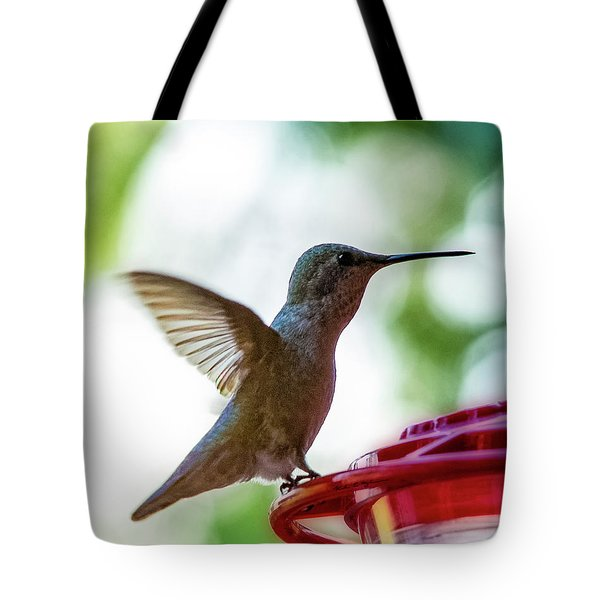 Tote Bag featuring the photograph Female Anna's Hummingbird V24 by Mark Myhaver